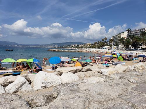 beach at monte carlo