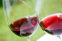 Wine Dinner - 8 - Course Northern Italian Wine Dinner Afton House Inn