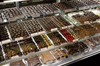 Enjoy the wonderful chocolates at Knoke's.