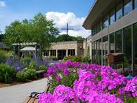 Gallery Image CCHS_Gardens-Flowers-Cross.jpg