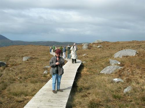 Board walk - Connemara National Park whose interpretive signs written by Dave Hogan