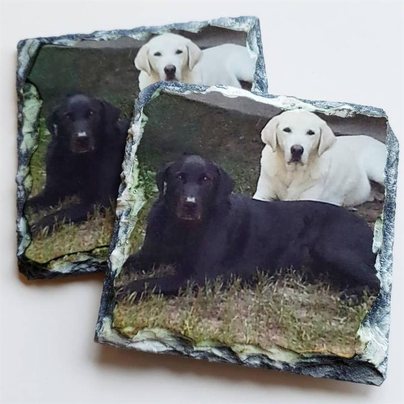 Coasters of All Kinds!