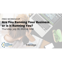 FREE WORKSHOP: Are You Running Your Business or is it Running You?