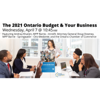 FREE WEBINAR: The 2021 Ontario Budget & Your Business