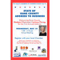 State of Kane County Address to Business - via Zoom