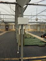 Wireless AP in a greenhouse