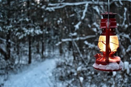 Lantern lit hike in the snow