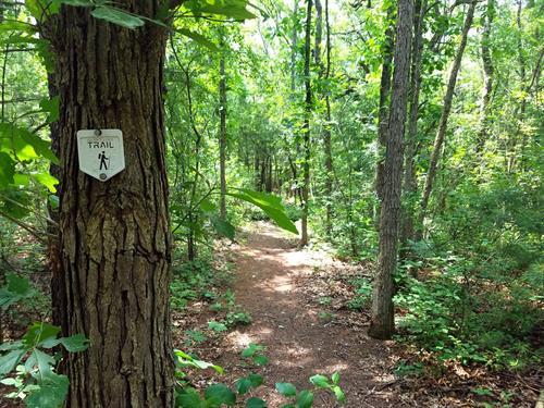 Trail marker on Hickory Ridge Hiking Trail