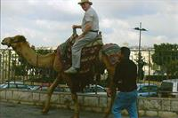 Camel riding in Jerusalem