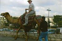 Camel riding in Jerusalem