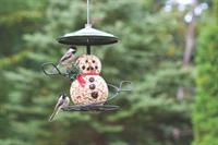 Seed characters make it both easy and FUN to feed the birds in your yard.
