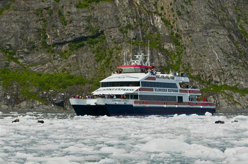 Phillips Cruises & Tours, M/V Klondike Express, Sea Otters on Ice Flow