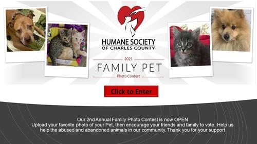 2021 Family Pet Photo Contest- August 1-31, 2020