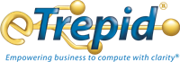 eTrepid Inc.