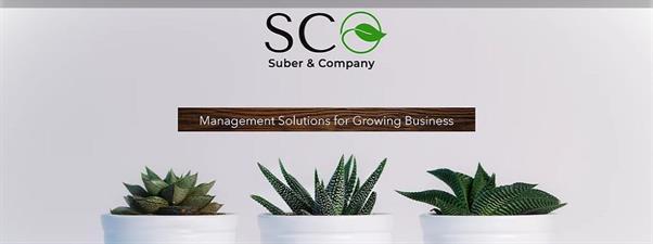 Suber & Company, LLC