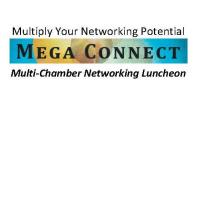 Mega Connect Luncheon 2/11/2020