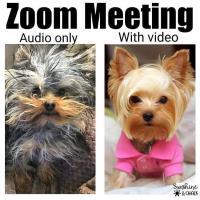 DBR ZOOM Networking Meeting