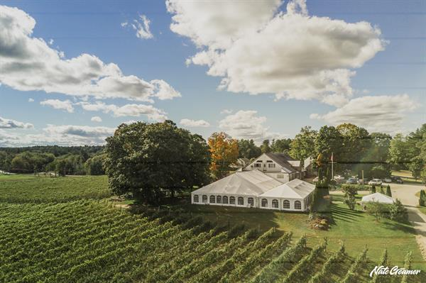 Gallery Image tent_surrounded_by_vineyard_Nate_Creamer_Photography.jpg