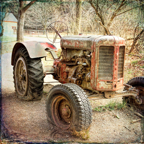Antique Tractor by Natalie Rotman Cote