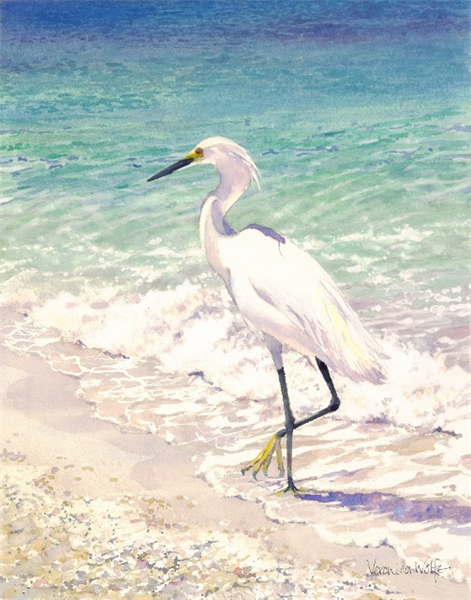 Snowy Egret by Veronica Wolfe