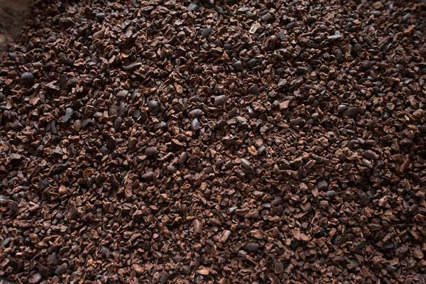 cacao nibs ready for grinding into pure chocolate