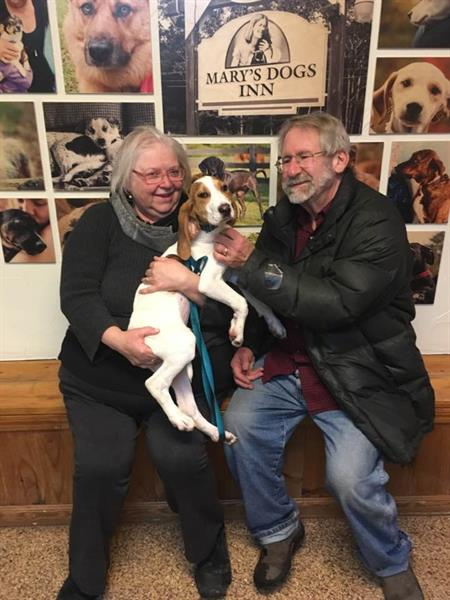 One of our recent adoptions...