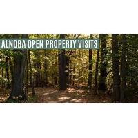 Alnoba Opens Property - UPDATE