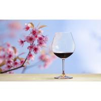 WINE TASTING at Trends Gift Gallery in the Wine Loft with