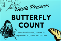 Duette Butterfly Count