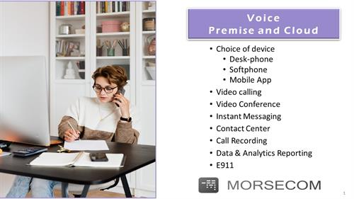 Voice Premise and Cloud