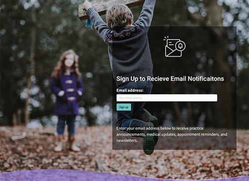 Gallery Image portfolio-stamford-pediatrics-email-signup.jpg