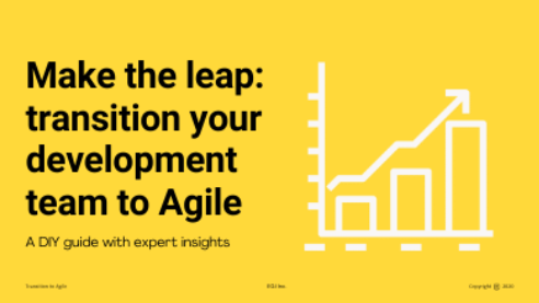 Go DIY - implement Agile with your technology team today