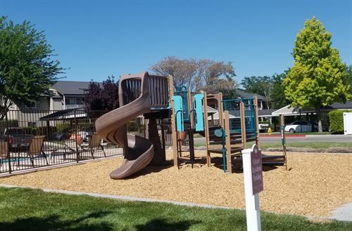 Gallery Image New_Playground_Equipment.jpg