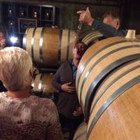 Barrel tasting with a wine thief