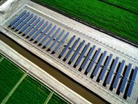 Agriculture Solar Install