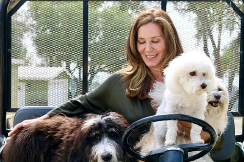 Gallery Image carol_and_the_dogs.jpg
