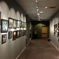 Art Gallery showcasing local artists