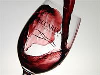 Calcareous Wine Glass
