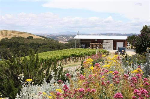 Gallery Image Winery.JPG