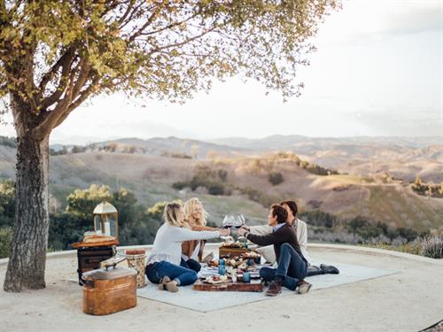 Picnic Experience on Top of DAOU Mountain