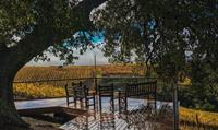 Summit Vineyard Tasting location at the Sundowner Deck (available by reservation)
