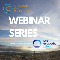 Sustainable Cork Programme: Exploring Climate Finance - What is it, and how to engage