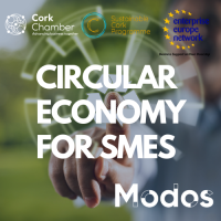 Circular Economy Training for SMEs