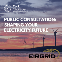 Public Consultation: Shaping Your Electricity Future