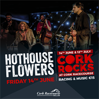 Cork Rocks with Hothouse Flowers