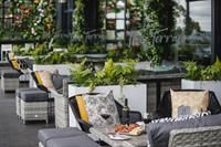 New look botanical Panorama Terrace at The Montenotte is set to be Cork's hottest summer spot for al fresco fun!