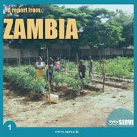 SERVE long term volunteer establishes community garden project in Mazabuka - Report from Zambia: community garden project
