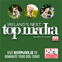 RSVP renews major sponsorship for Ireland's Next Top Madra competition