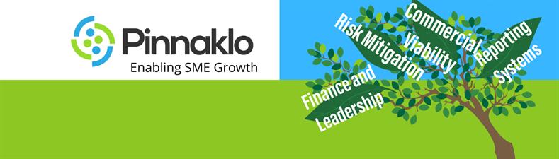 Pinnaklo Ltd