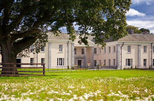 Gallery Image Castlemartyr-Resort_Manor_Entry_Pasture_flowers.jpg
